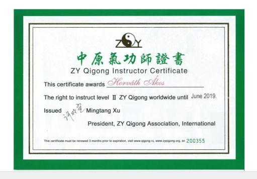 csikung-vilaga-certificate-Horvath-Akos-tanusitvany-qigong-Mingtang-Xu-Kundawell