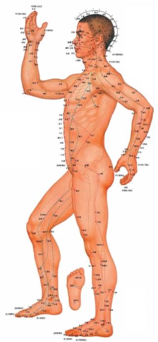 csikung-vilaga-eloadas-acupunkture